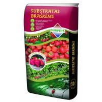 Substartas braškėms su agroperlitu 50 L